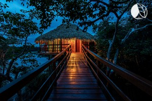 Photo of Luxury Tree House Bungalow with Panoramic Rainforest Views near Manaus, Brazil