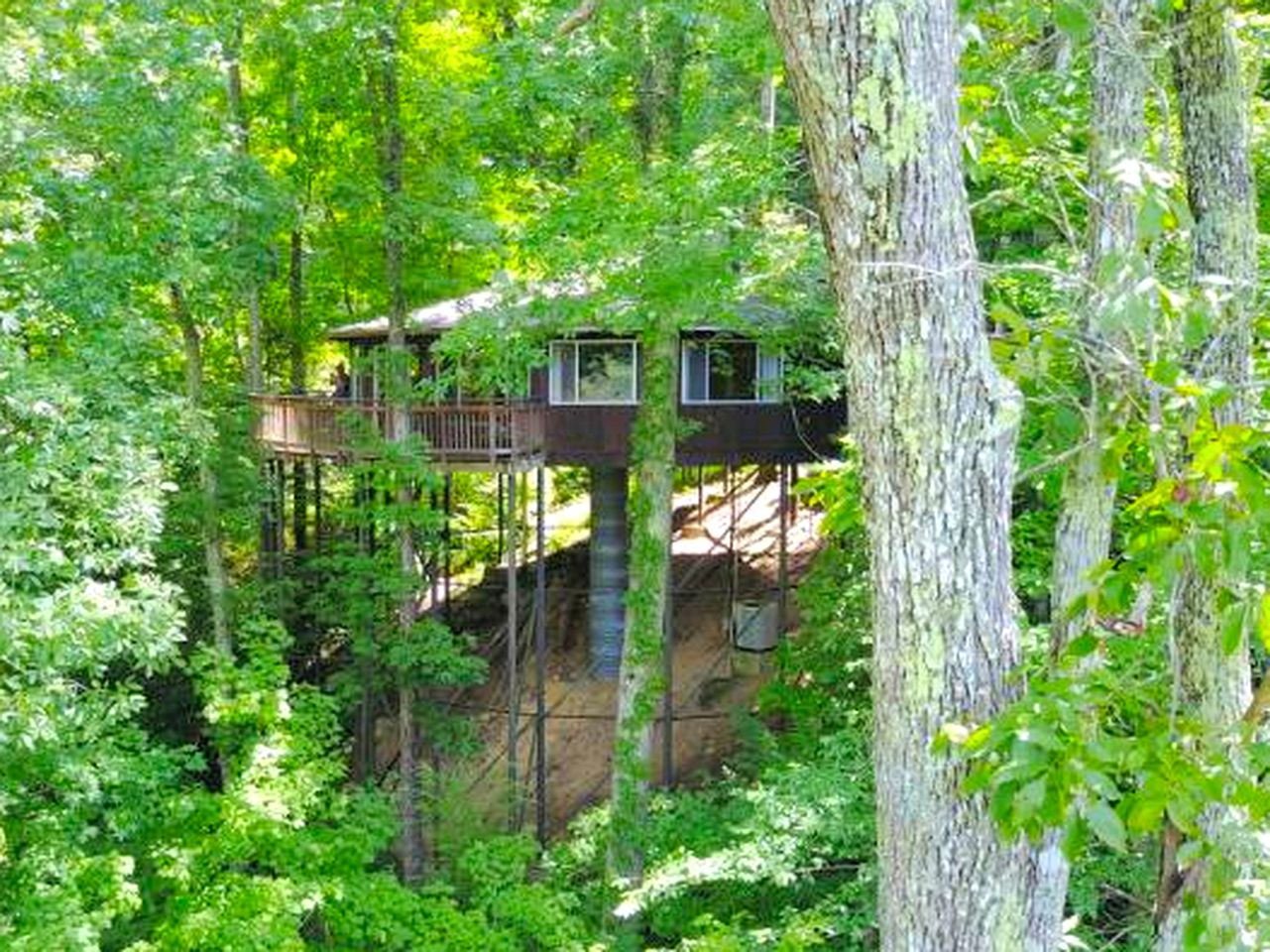 Tree Houses (Parkers Lake, Kentucky, United States)