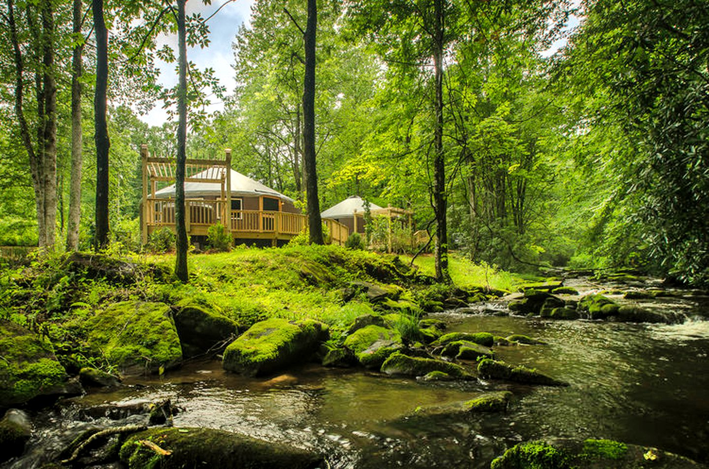 Natahala yurt rental: Glamping in yurts Natahala, NC mountains (Topton, North Carolina, United States)