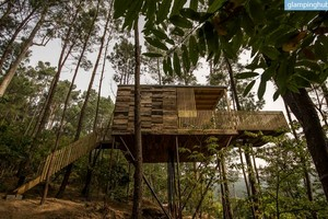 Modern, Eco-Friendly Tree Houses in Woodlands of Galicia, Spain