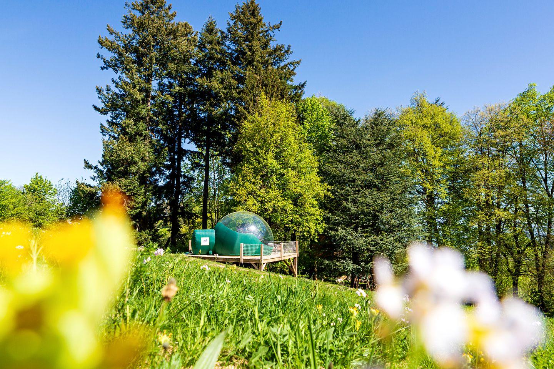 Bubbles & Domes (Voiron, Auvergne-Rhône-Alpes, France)