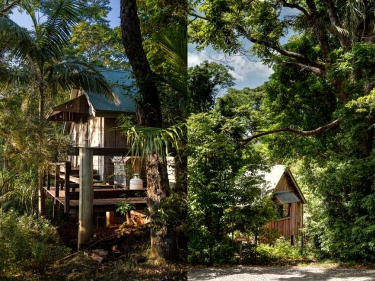 Tree Houses (Mount Glorious, Queensland, Australia)