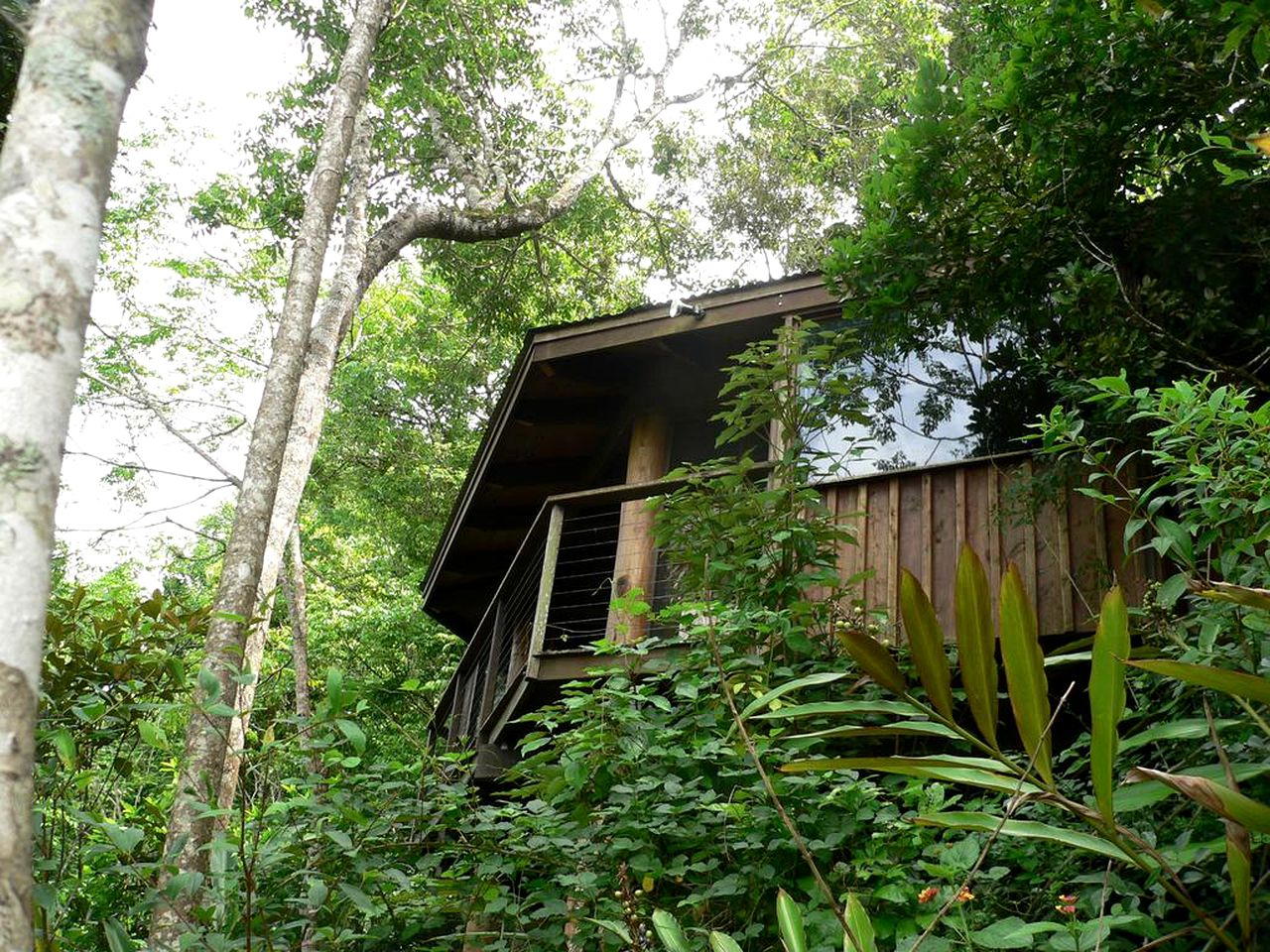 Unique self-contained accommodation for tree house glamping, QLD