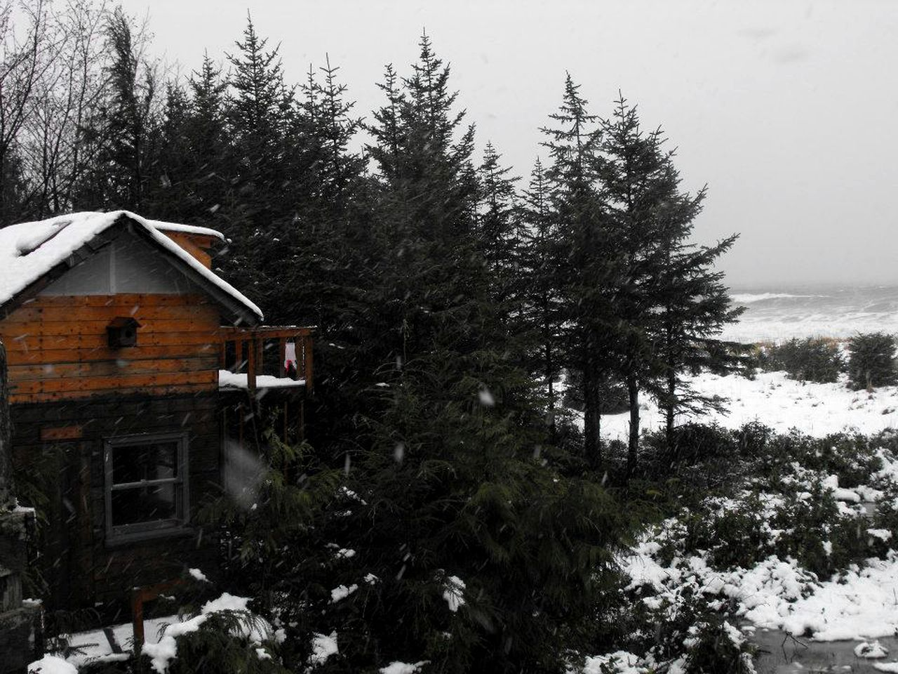 Snow falls over this luxury tree house: Masset, BC