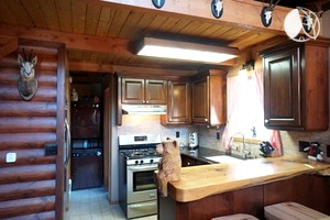 Photo of Pet-Friendly Cabin with Rustic Interior near Big Bear, California