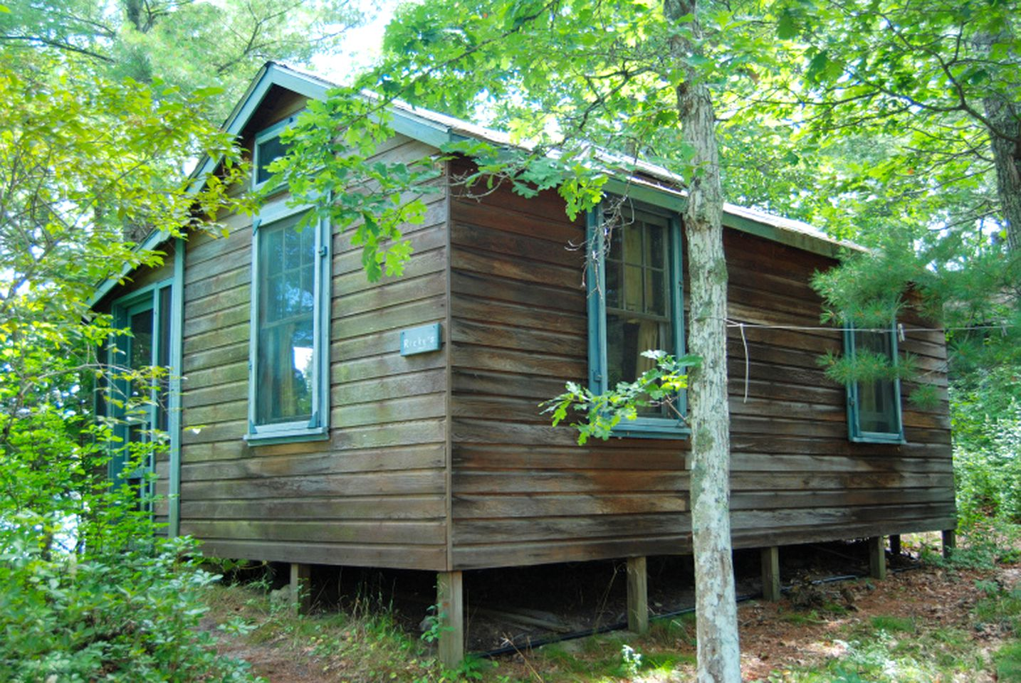Green leaves surround Cape Cod cabin rental: Massachusetts, US