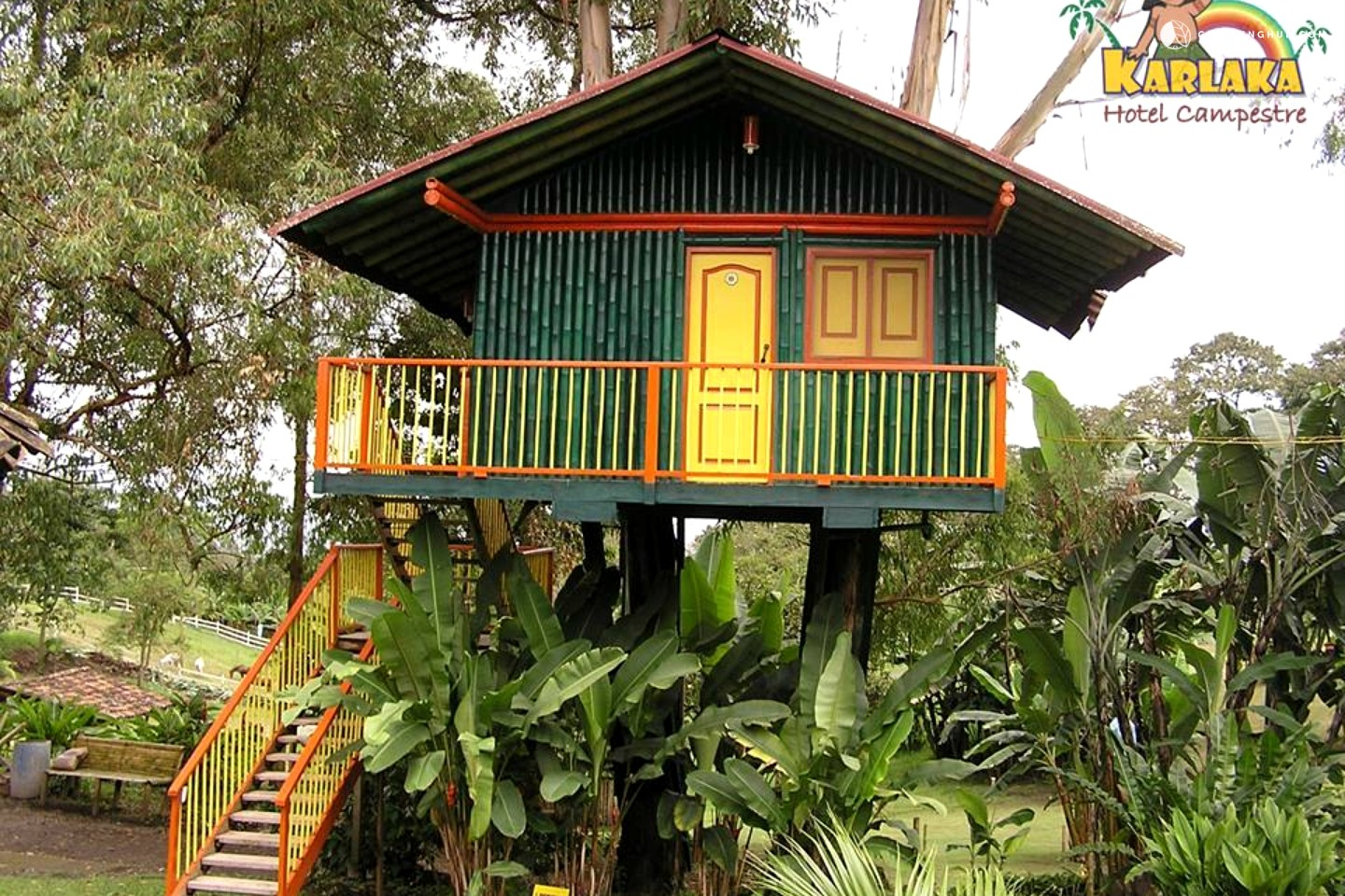 Glamping quindio colombia tree house in armenia carlaca for Casa colombia