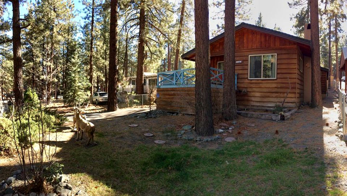 Cabins (Wrightwood, California, United States)