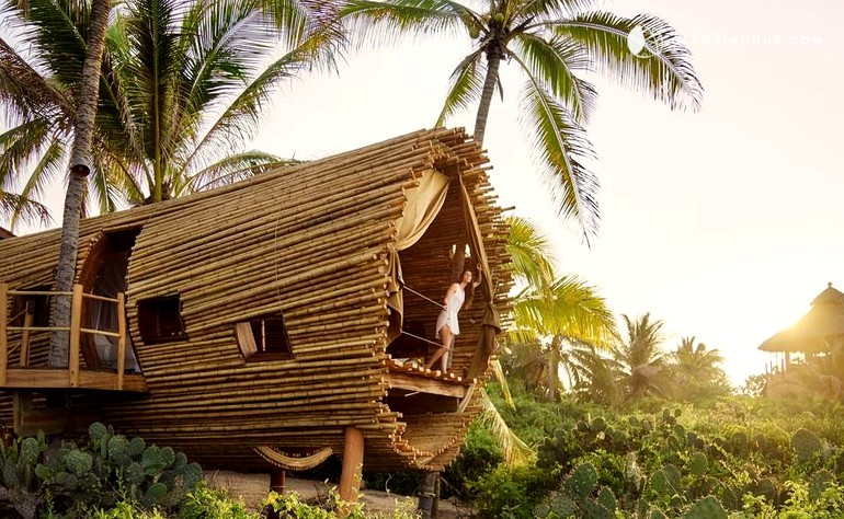 Tree House Rental In Mexico Glamping Hub