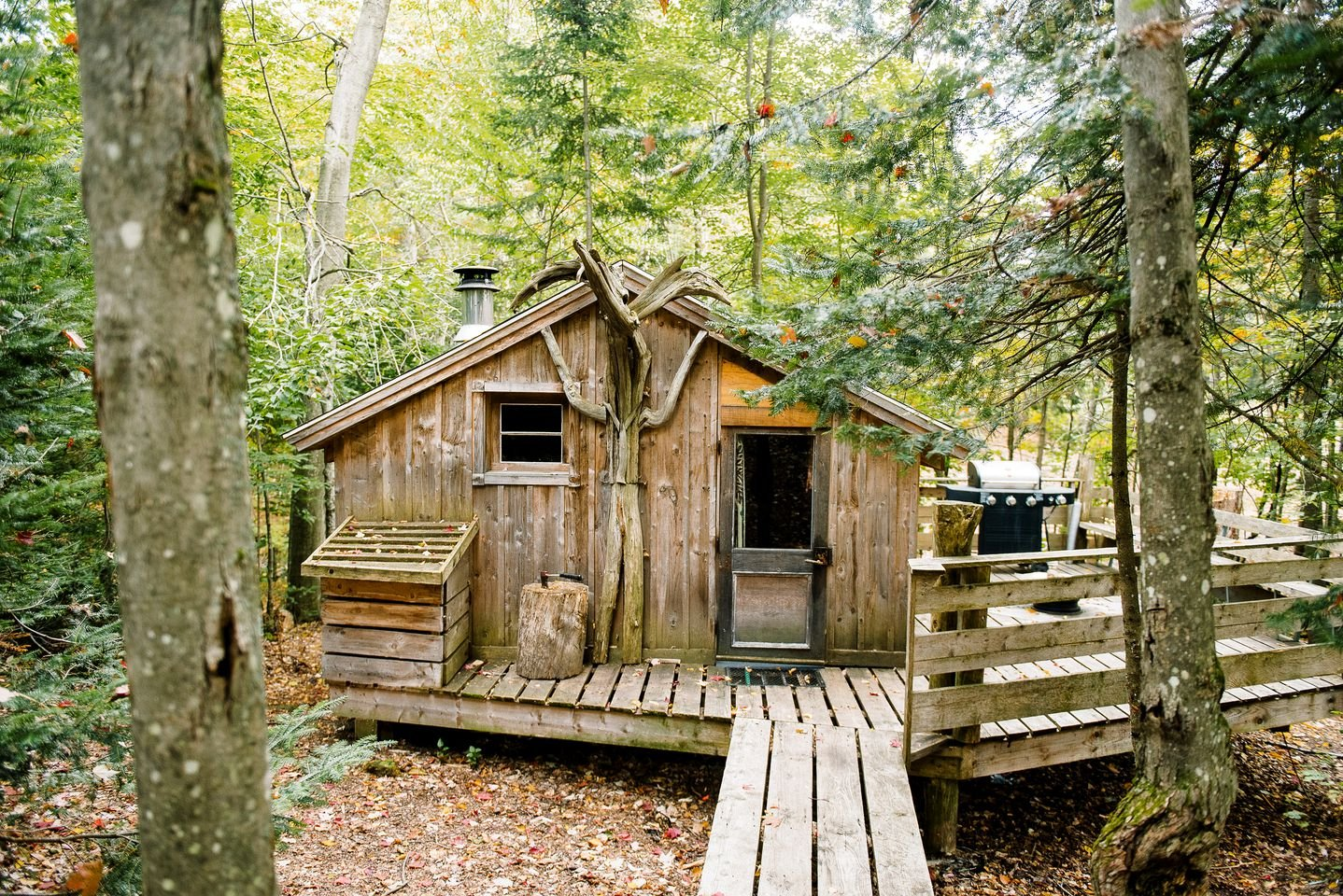 Tiny Houses (Saint-Sauveur, Quebec, Canada)