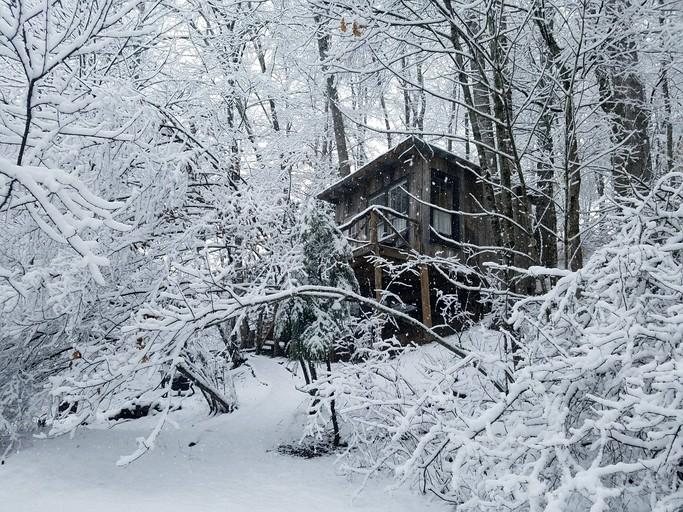 Tree House Rental Near West Jefferson, North Carolina