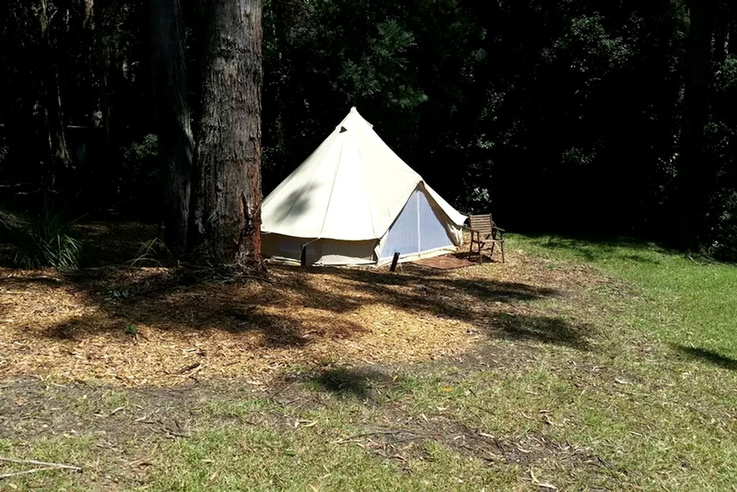 Glamping Sydney: eco-friendly tent rentals near Avoca Beach