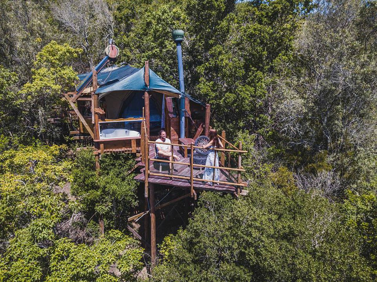 Tree Houses (Knysna, Western Cape, South Africa)