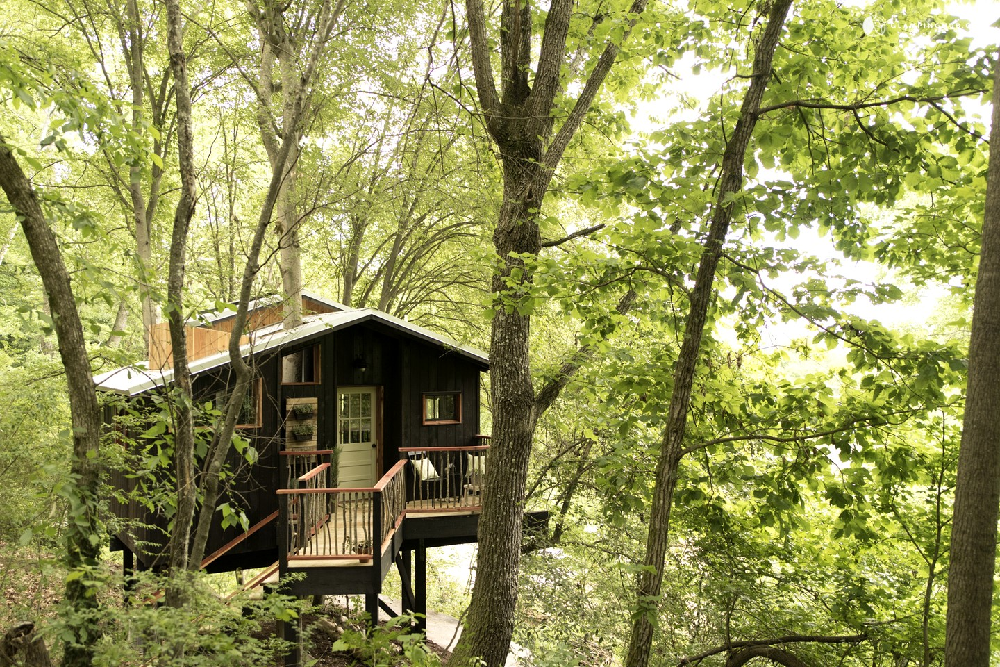 Romantic Tree House near Chattanooga, in the Woods of Georgia