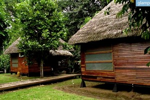 Secluded Eco-Cabins Tucked Away in the Amazon Rainforest in Ecuador
