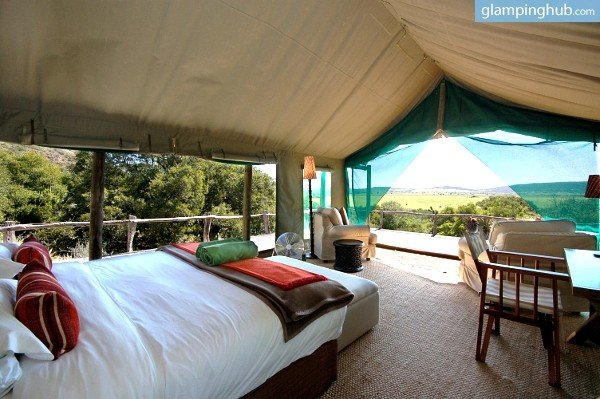 & Rent a Safari Tent in Amakhala Game Reserve | Glamping South Africa