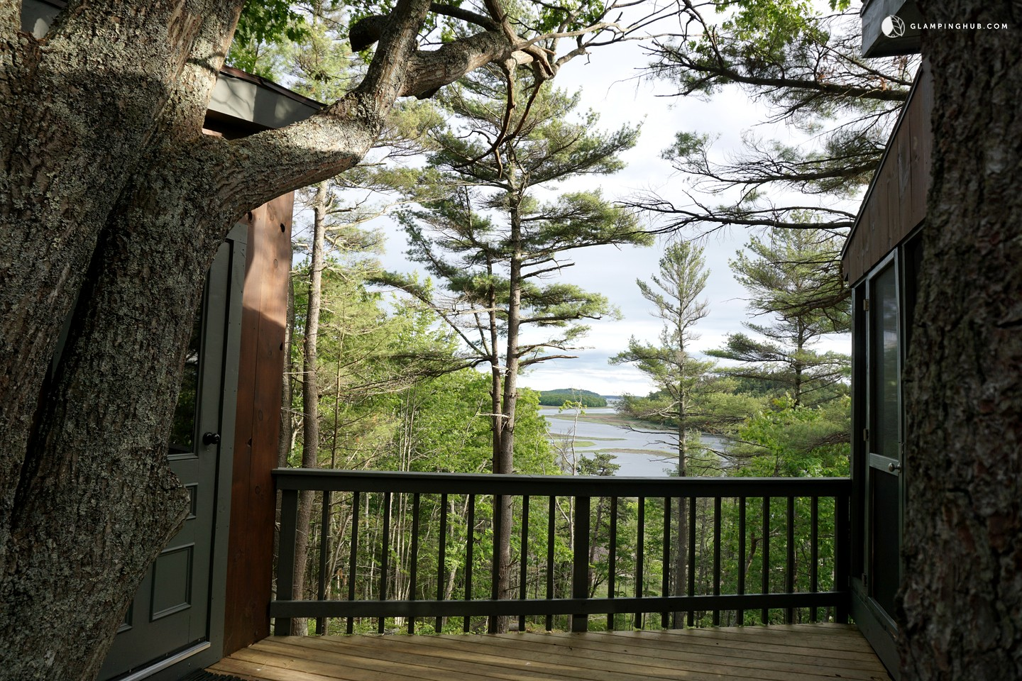 tree house rental in maine