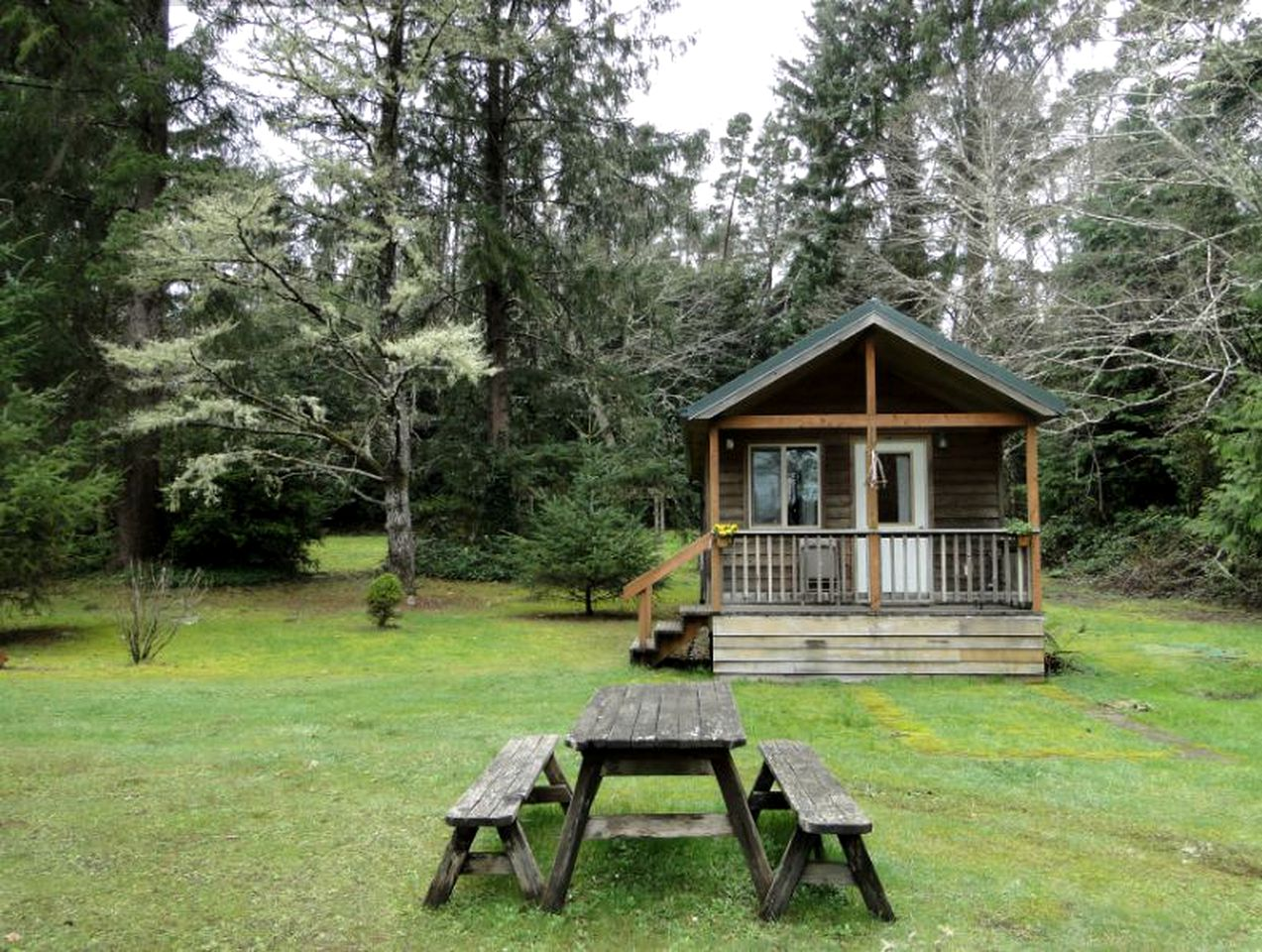 Cabins (Ocean Park, Washington, United States)