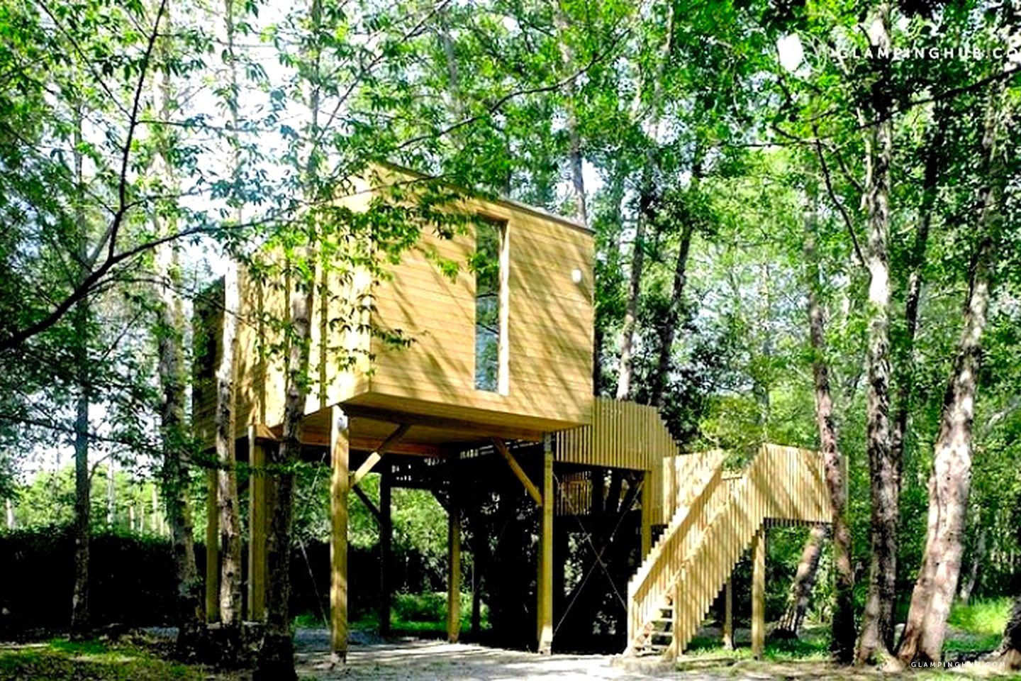 Rent treehouse in the forest galicia spain glamping hub