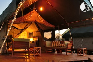 Safari Tents & Glamping New South Wales | Luxury Camping Australia