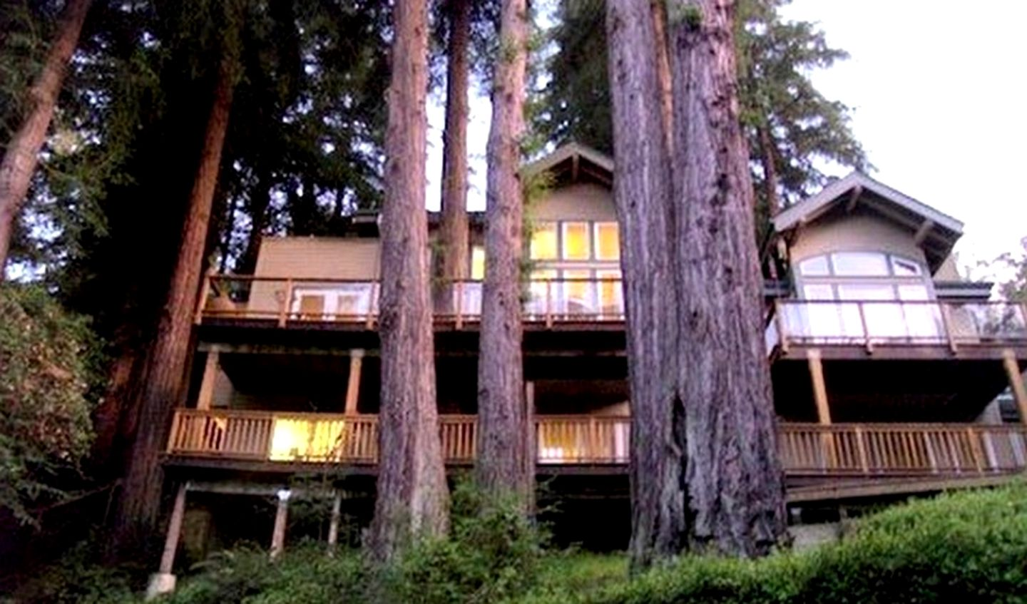 Tree Houses (Mill Valley, California, United States)