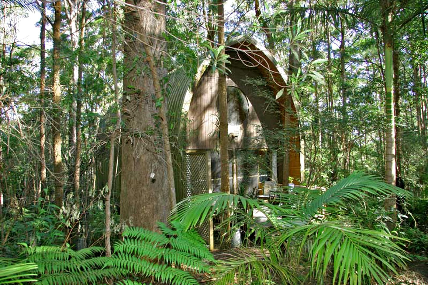 Cabins (Springbrook, Queensland, Australia)