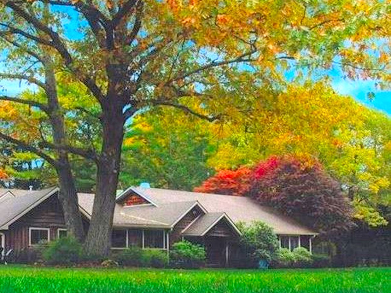 Cabin rental surrounded by trees with colorful leaves in autumn in Voluntown, CT.