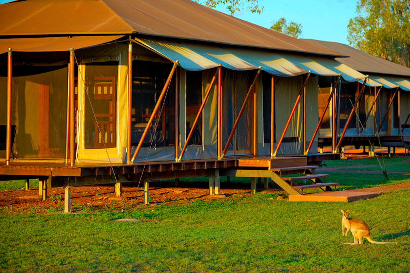 Safari tent rental to go glamping on Northern Territory holidays