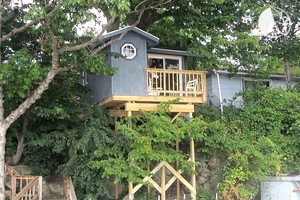 Pet friendly cabins in upstate new york for Treehouse cabins aurora ny