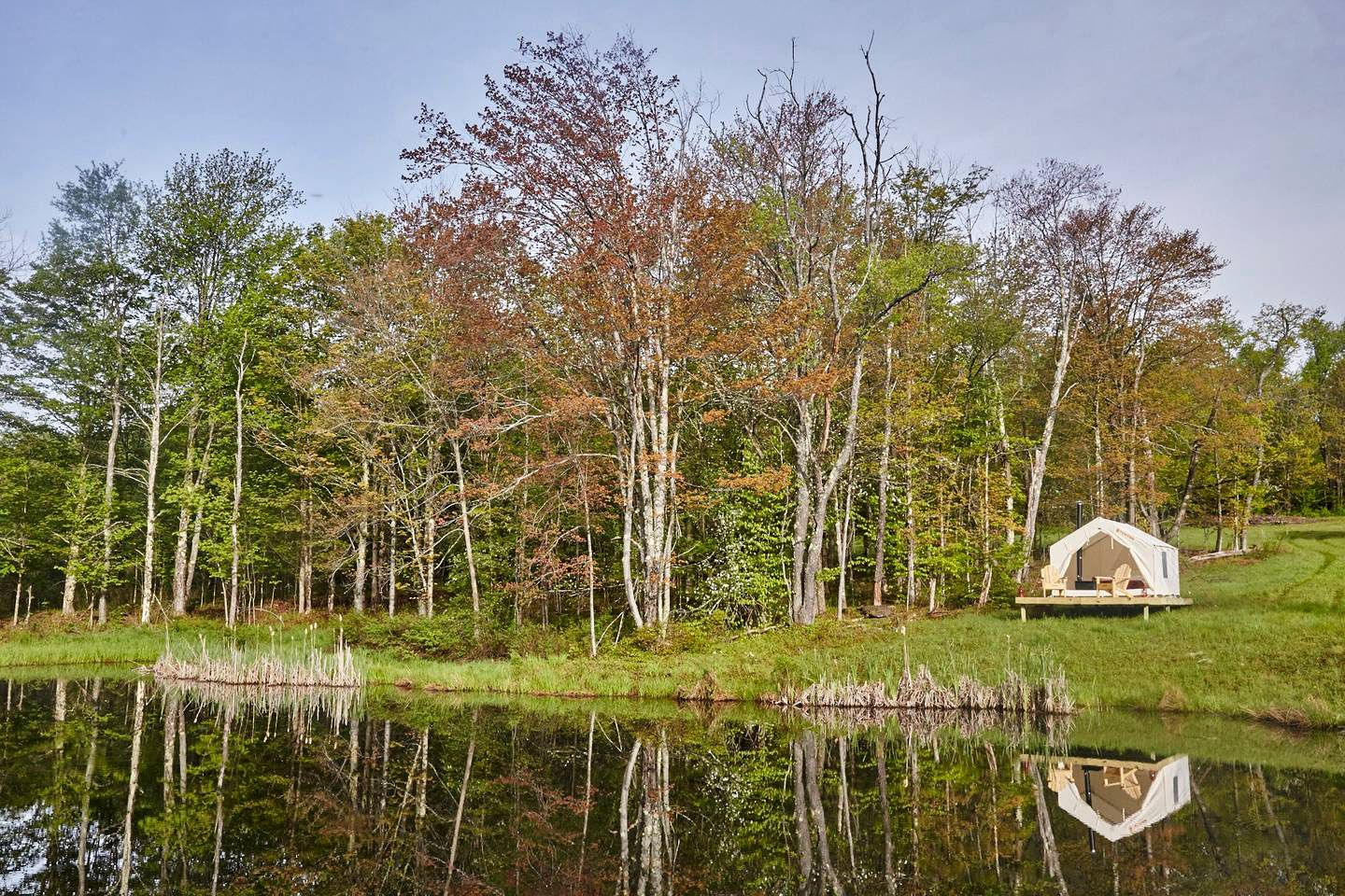 Tented Cabins (Delhi, New York, United States)