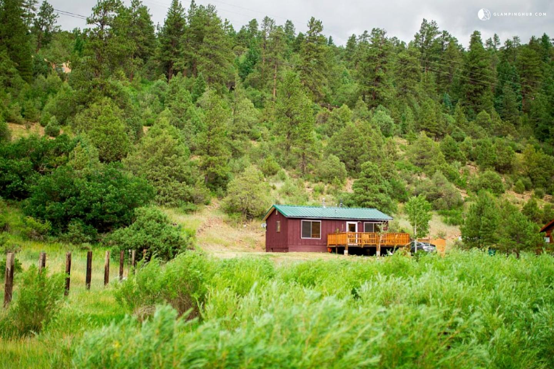 charming pet friendly mountain cabin near santa fe new mexico