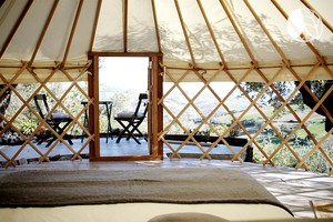 Photo of the olive blossom yurt