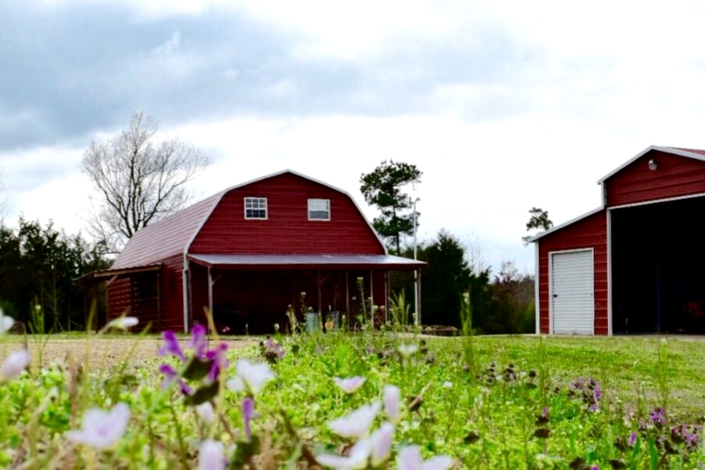 Luxury Barn In East Texas