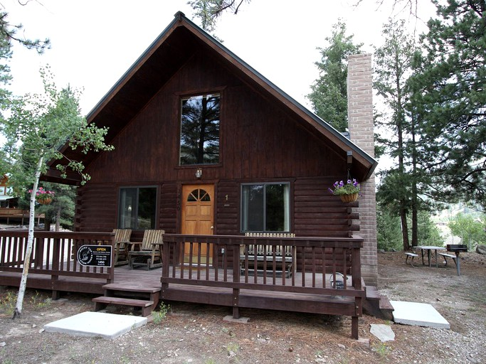 Fantastic Romantic Winter Cabin Rental In The Woods In Lake City Colorado Download Free Architecture Designs Grimeyleaguecom