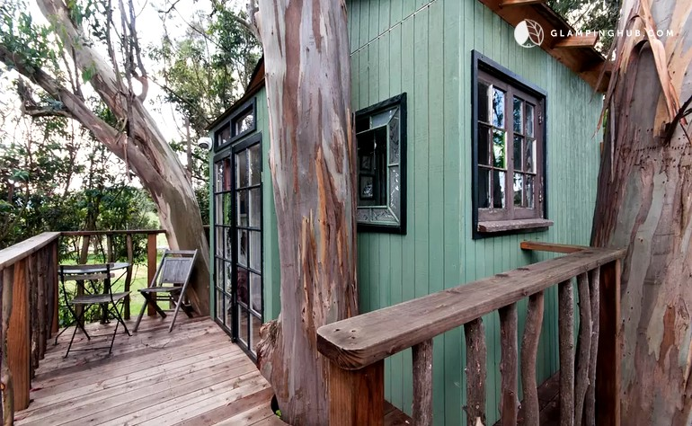 Magically Romantic Tree House Rental in Eucalyptus Grove in Sonoma County