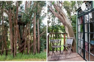 Photo of Tree House at Swallowtail Studios