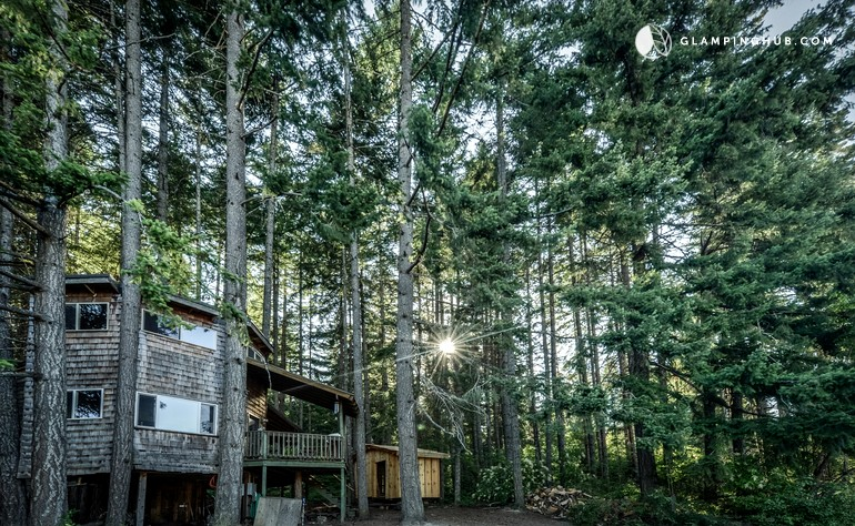 Dog-Friendly Tree House in Columbia River Gorge, Washington