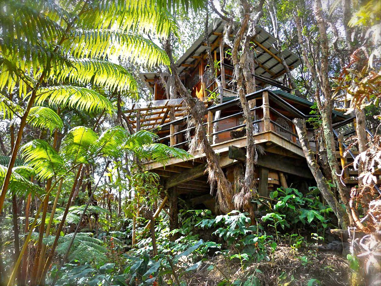 Picture of: Tree House Volcano Big Island Hawaii Glamping Hub