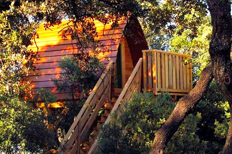 Casa árbol De Lujo Madrid España Glamping Hub