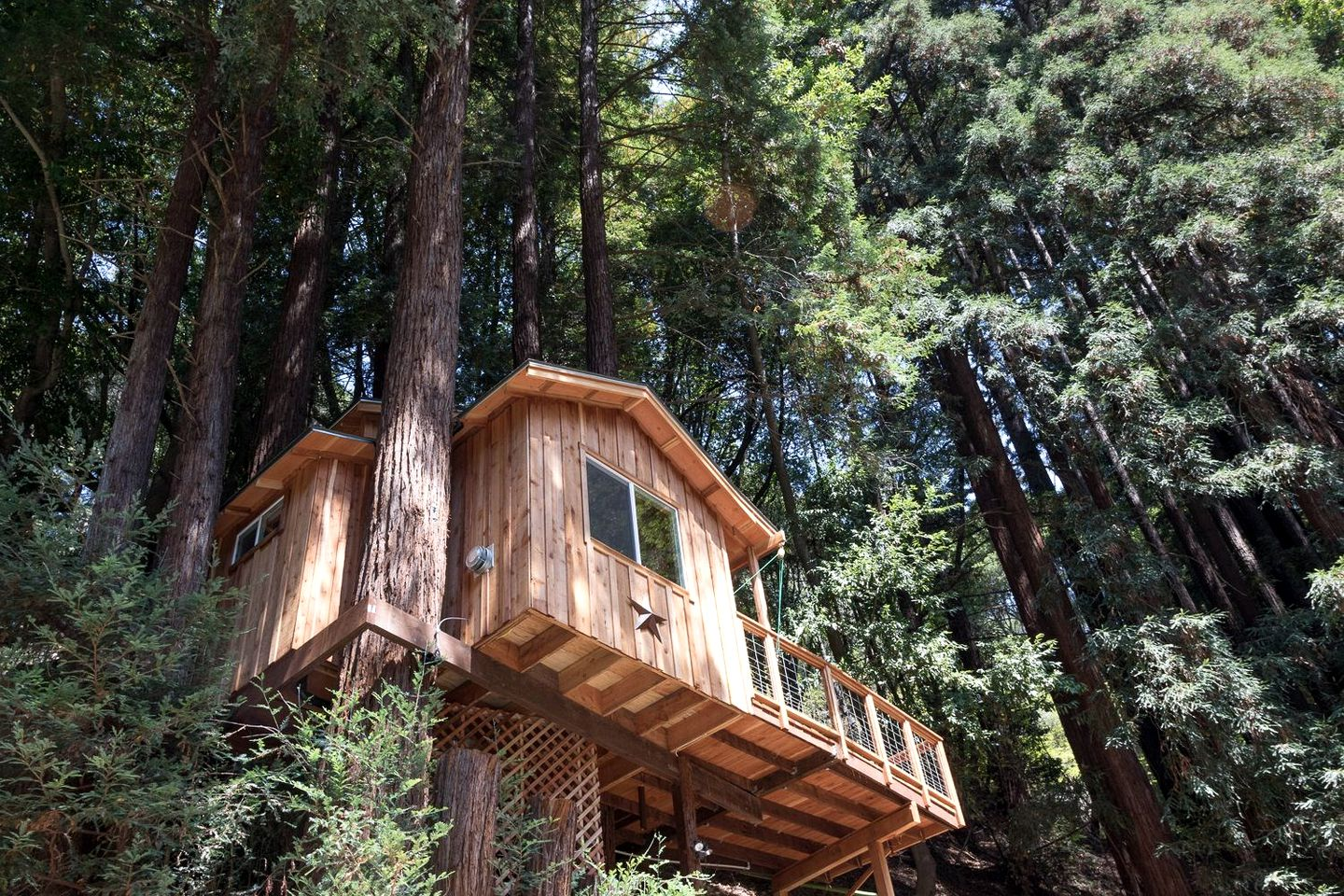 Tree house rental for a Santa Cruz weekend getaway.