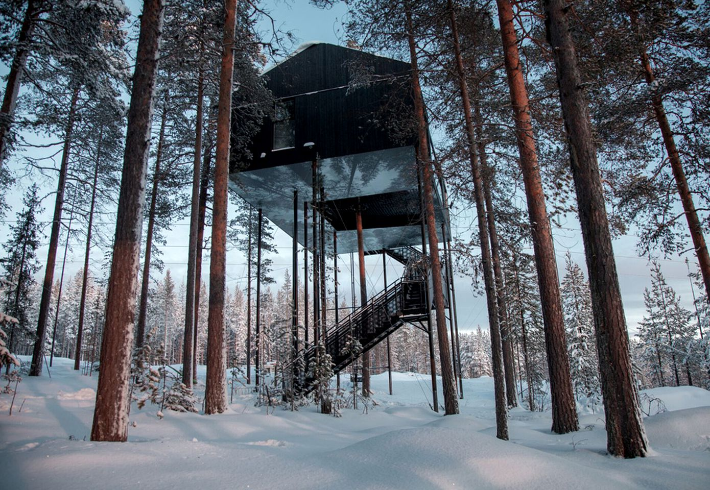 Tree Houses (Harads, Norrbotten, Sweden)