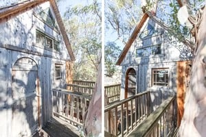 Photo of Treehouse at Swallowtail Studios