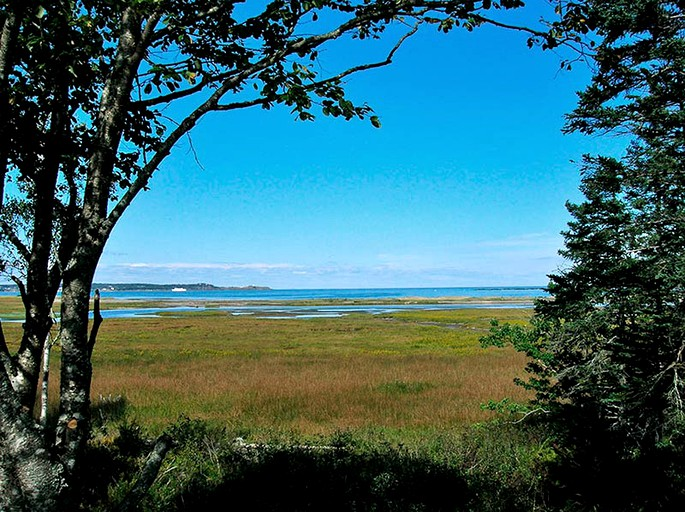 Bay Of Fundy Camping >> Unique Camping Cabin Near Bay Of Fundy In New Brunswick Canada