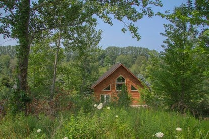 Rent a Pet-Friendly Cabin | Michigan | Glamping Hub