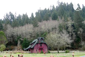 Photo of Upscale Farmhouse Cabin Encircled by Redwoods, Northern California