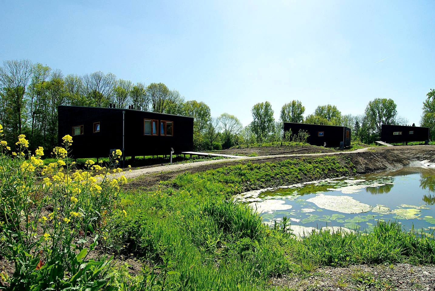 Cabins (Amsterdam, North Holland, Netherlands)