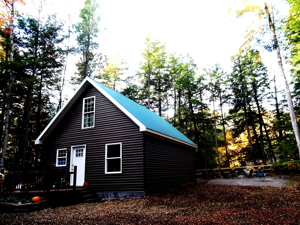 Brown log cabin rental with green roof surrounded by pine trees near Oneida Lake, New York.