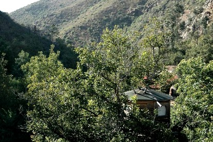 Best Tree House Hotels in Portugal