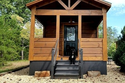 Dog-Friendly Glamping Holidays in the U.S.