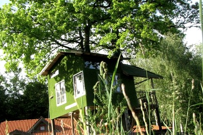 Dog-Friendly Vacation Rentals in Slovenia